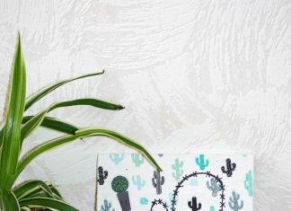 Maak jouw eigen cactus kunstwerk