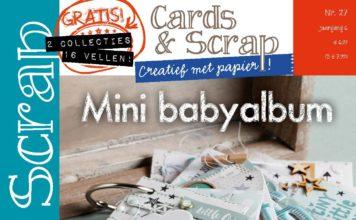 cards & scrap 27