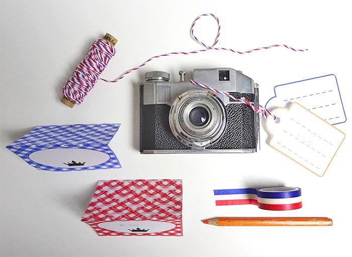 Printable DIY's voor Koningsdag kaartjes en labels