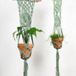 plantenhanger